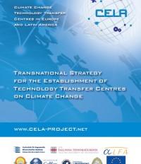 caratula transnational strategy